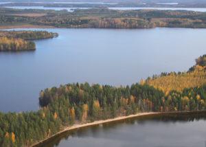 Karjalan Pyhäjärven Papinniemi ilmasta. Kuva Heimo Paakkinen